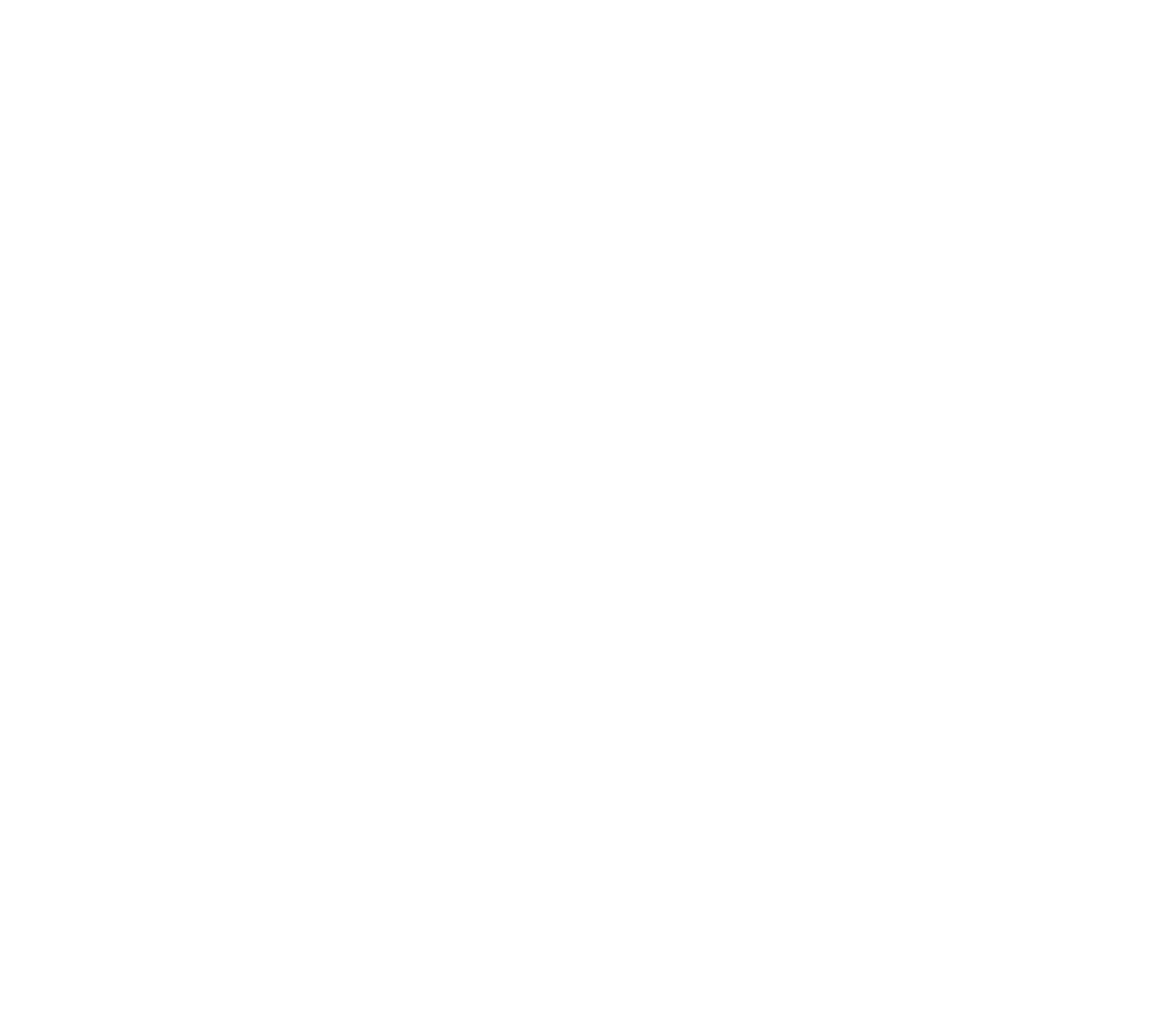 Road Trail Run - Magnifly 3